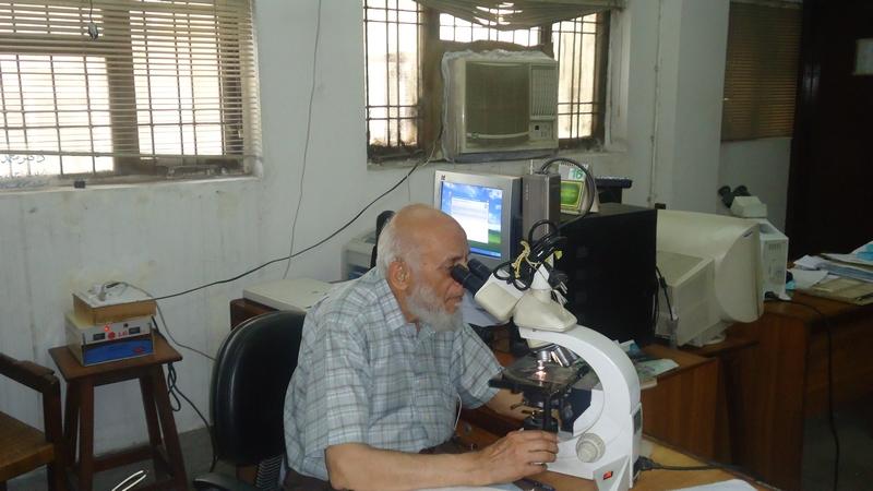 Histopathology gdh
