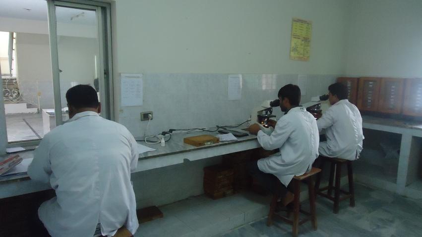 afb test in microlab gulab devi hospital