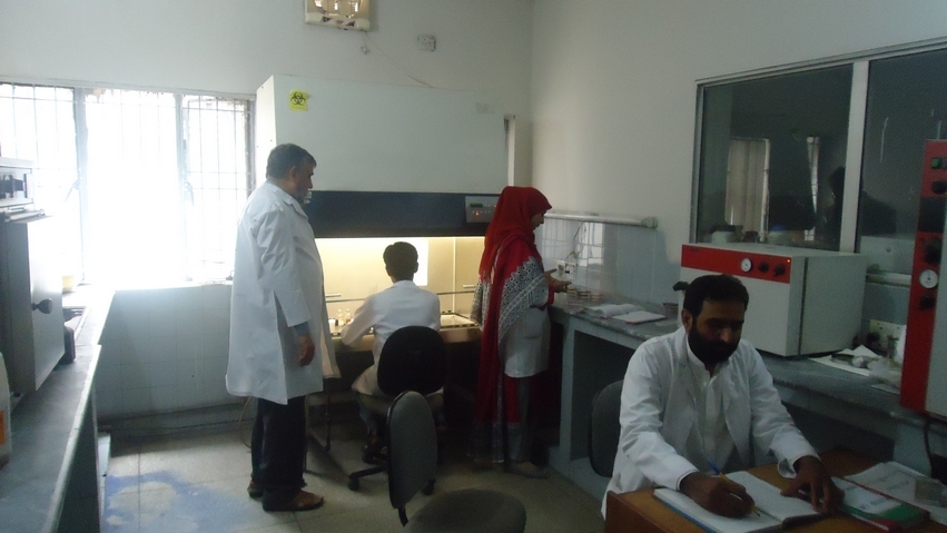 test performing in pathology lab gulab devi hospital